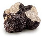 Exquisite black truffle – Tuber Melanosporum