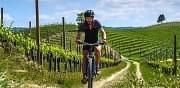 E-bike Wine Tour
