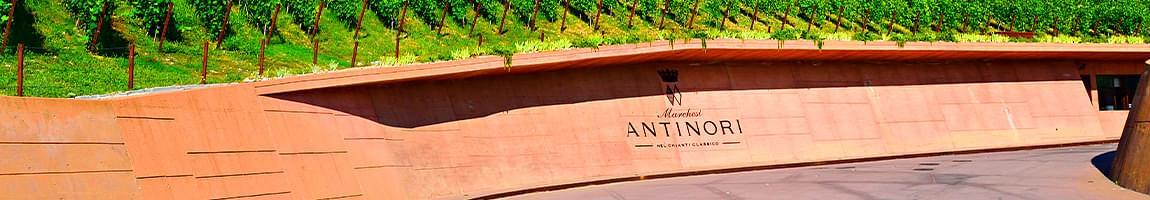 antinori vini