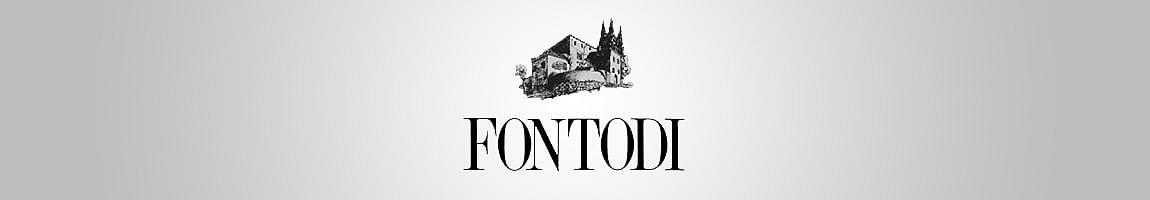 cantina fontodi