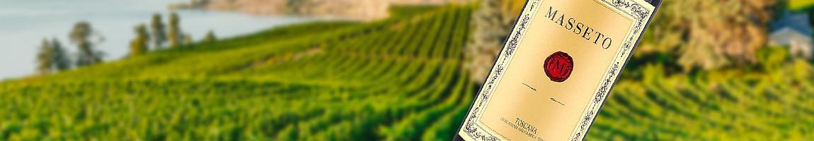 masseto wine